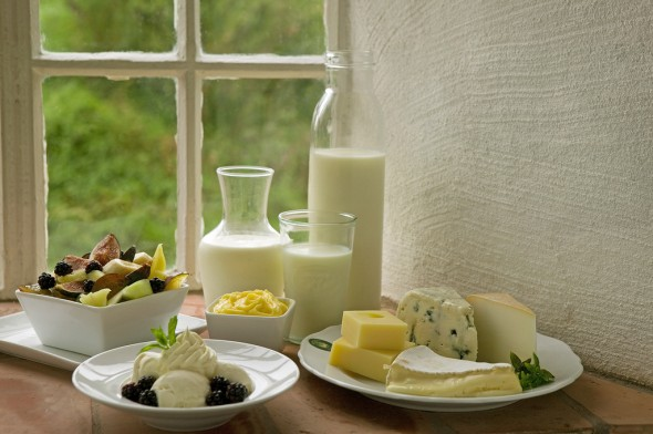 bild på mejeriprodukter