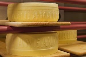 närproducerad ekologisk ost på skärbräda