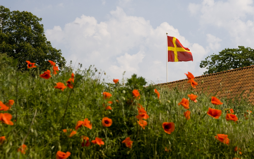 bild på ett valmofält med en skånsk flagga