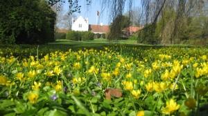 Vår på Ängavallen / Spring at angavallen.se