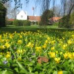 Forår på Ängavallen